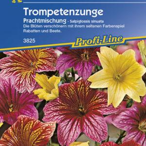 Vrtnarstvo Breskvar - Salpiglossis sinuata Prachtmischung