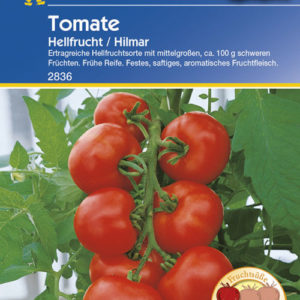 Vrtnarstvo Breskvar - Solanum Lycopersicum Hilmar