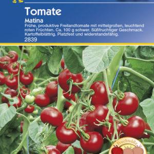 Vrtnarstvo Breskvar - Solanum lycopersicum Matina