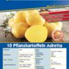 Vrtnarstvo Breskvar - Solanum Tuberosum Adretta
