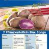 Vrtnarstvo Breskvar - Solanum tuberosum Blue Congo
