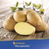 Vrtnarstvo Breskvar - Solanum tuberosum Solist