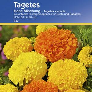 Vrtnarstvo Breskvar - Tagetes erecta Hohe Mix