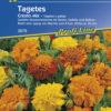 Vrtnarstvo Breskvar - Tagetes patula Çresto Mix