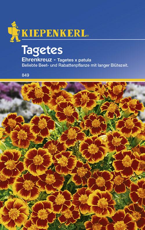 Vrtnarstvo Breskvar - Tagetes patula Ehrenkreuz