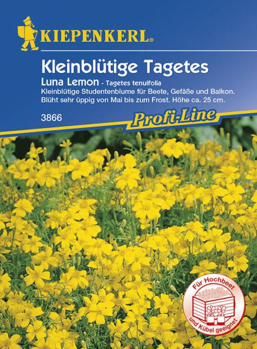 Vrtnarstvo Breskvar - Tagetes tenuifolia Luna Lemon
