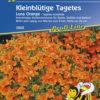 Vrtnarstvo Breskvar - Tagetes tenuifolia Luna Orange