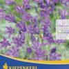 Vrtnarstvo Breskvar - Triteleia Queen Fabiola