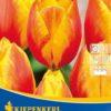 Vrtnarstvo Breskvar - Tulipa Flair