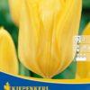 Vrtnarstvo Breskvar - Tulipa Golden Emperor