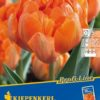 Vrtnarstvo Breskvar - Tulipa Orange Princess