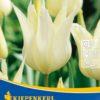 Vrtnarstvo Breskvar - Tulipa Sapporo