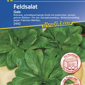 Vrtnarstvo Breskvar - Valerianella locusta Gala