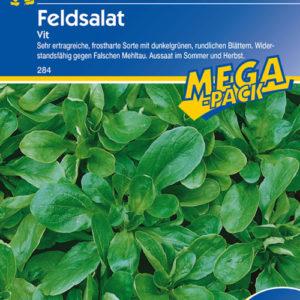 Vrtnarstvo Breskvar - Valerianella locusta Vit Mega Pack