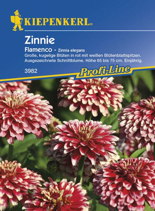 Vrtnarstvo Breskvar - Zinnia elegans Flamenco