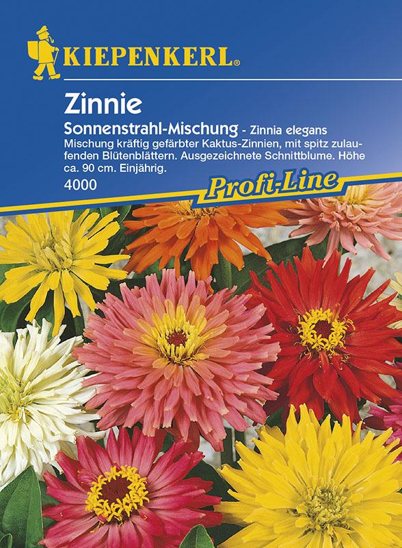 Vrtnarstvo Breskvar - Zinnia elegans Sonnenstrahl Mix