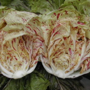 Vrtnarstvo Breskvar - Cichorium Intybus Di Lusia