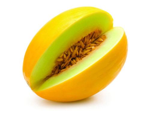 Vrtnarstvo Breskvar - Cucumis melon Frevo F1