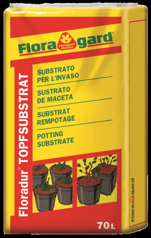 Vrtnarstvo Breskvar - Floradur Pot Cyclamen – Poinsettia