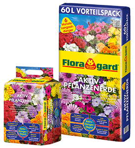 Vrtnarstvo Breskvar - Floragard Active Planting Soil
