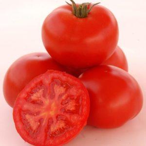 Vrtnarstvo Breskvar - Solanum Lycopersicum Troy